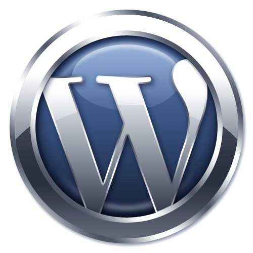 WordPress CMS experts for website design
